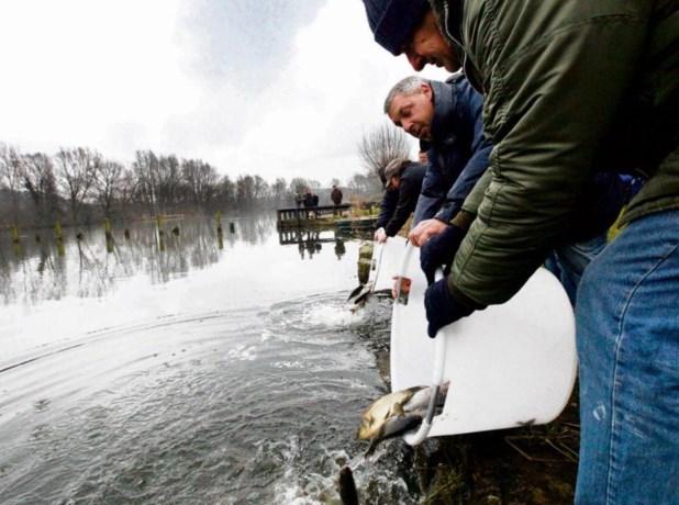 Variatie voor vissen en vissers