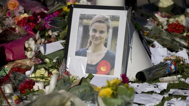 'Jo Cox gedood om politieke ideeën'