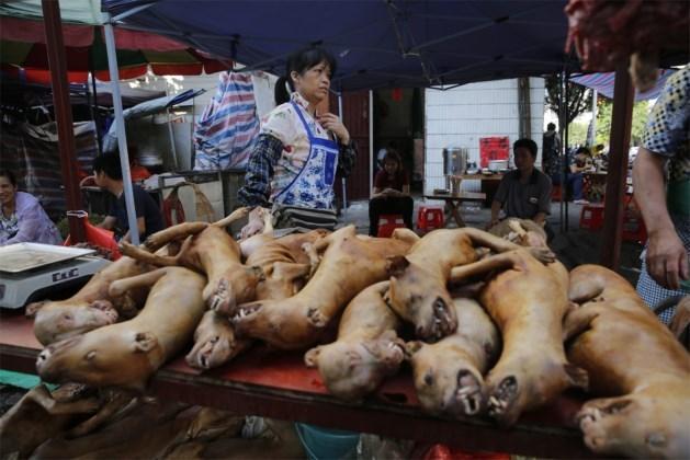 Tienduizenden honden gedood voor festival