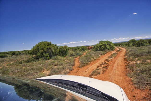 Boze gids steekt in op toeristen in Kenia