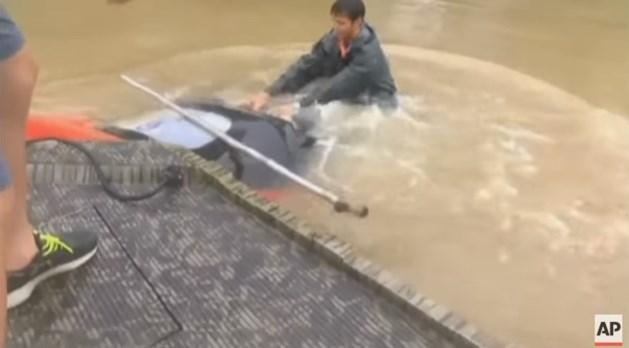 VIDEO: vrouw en hond gered uit zinkende auto