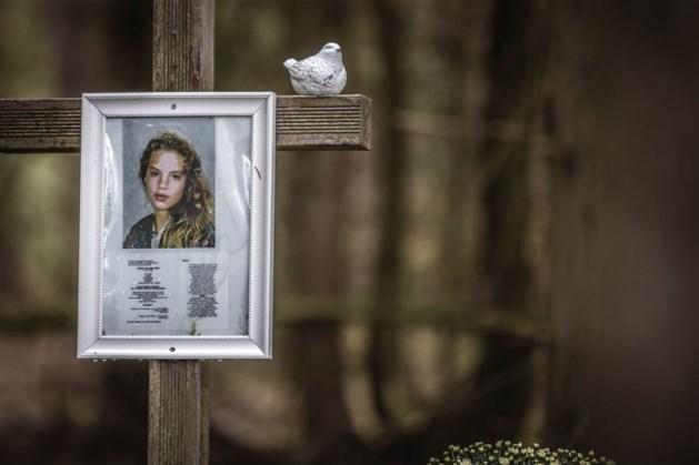 'Celstraf en tbs geboden in zaak Van den Hurk'