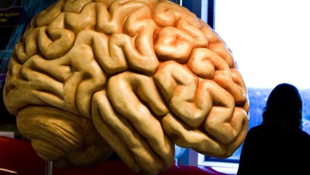 Doorbraak: ALS-patiënte communiceert met hersenimplantaat