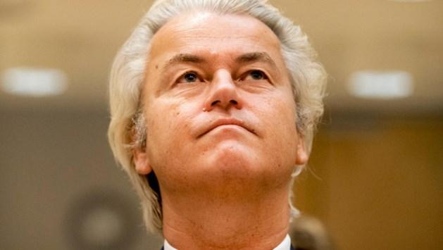 PVV loopt steeds verder uit in peiling
