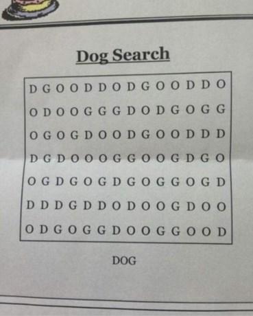 """""""Moeilijkste woordzoeker ooit"""" verbaast het internet: Vind jij de hond in deze breinbreker?"""