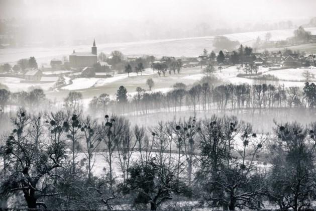 Sneeuw in Limburg