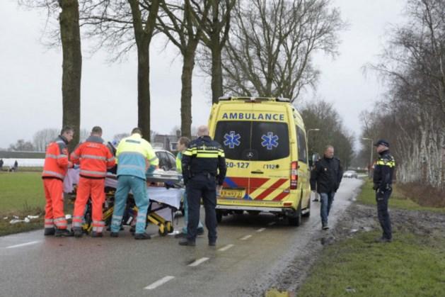 Twee honden doodgeschoten na verwonden man