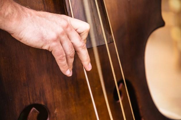 Peter Willems (17) virtuoos op contrabas