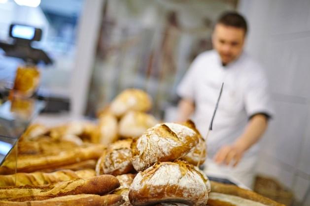 Vijf Marokkanen opgepakt bij bakkerij in Tegelen