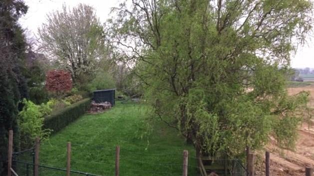 Het kan in Maastricht: een tuin half in België en half in Nederland