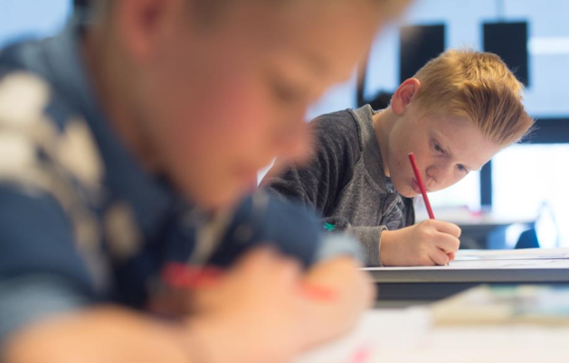 Alternatief voor Cito-toets wint terrein op Limburgse scholen