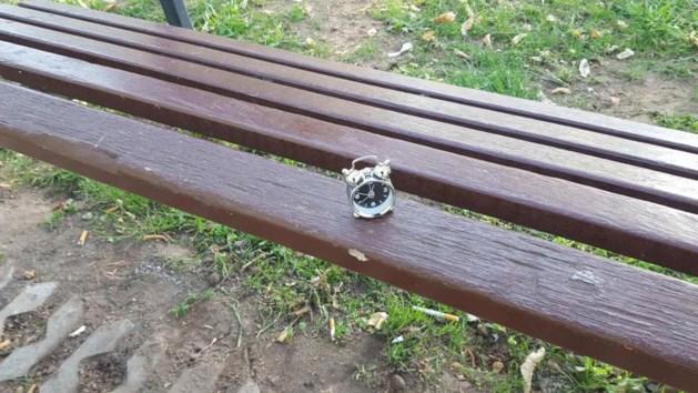 Mysterieuze wekkertjes in park zorgen voor hoofdbrekens