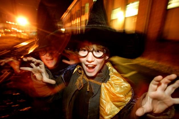 Dieven aan de haal met Harry Potter-verhaal