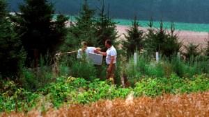 'Rechters moeten gaan kijken bij kerstbomenveld waar Nicky gevonden werd'