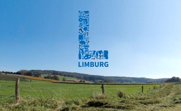 Dit logo moet Limburg van zijn 'Calimero-complex' afhelpen