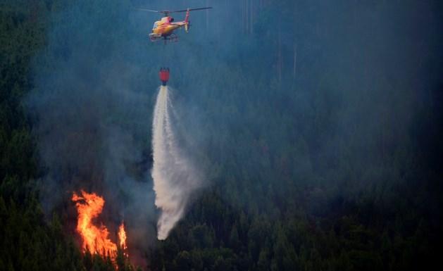 Dodental verwoestende bosbranden Portugal loopt verder op