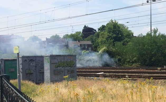 Treinverkeer tijdje stil na bermbrand in Roermond