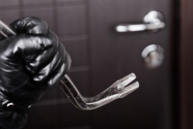 Inbrekers in de kraag gevat dankzij alerte buurman