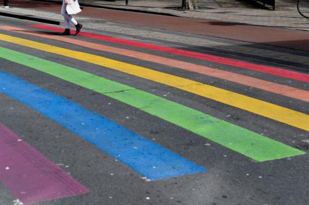 Ook Roermond krijgt een 'gaybrapad'