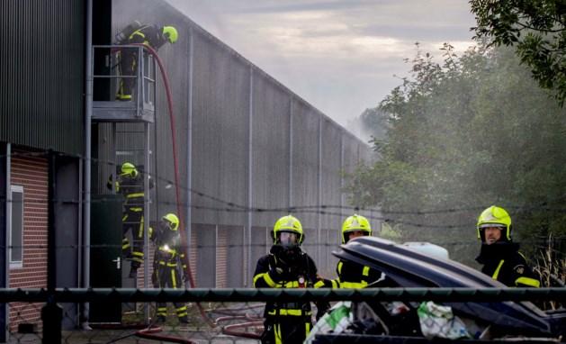 Fikse brand bij pluimveebedrijf in Nederweert; 'Groot aantal kippen omgekomen'