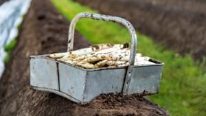 Kaart - Weer meer asperges geoogst in 2017