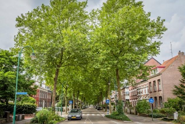 Kapellerlaan in Roermond gaat op de schop