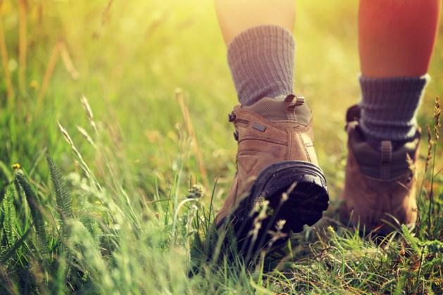 Geld op voor inrichten wandelpaden Holtum