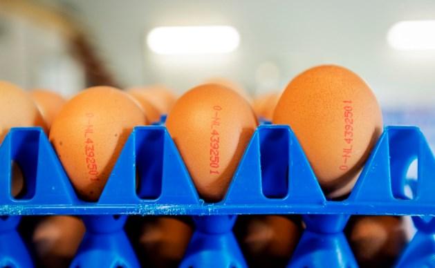 Duitse Aldi haalt alle eieren uit schappen