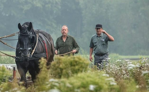 Producent pikt afwijzen 'De Wilde Boerderij' Bergen niet