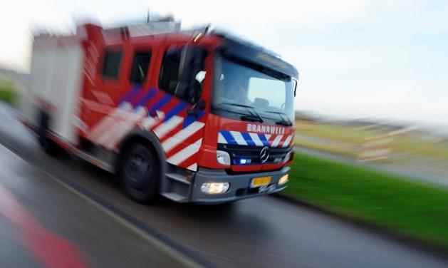 Oldtimers in vlammen op: politie zoekt brandstichter