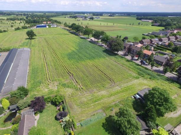 Plan voor zonnepark in Grashoek dat hele dorp van stroom kan voorzien