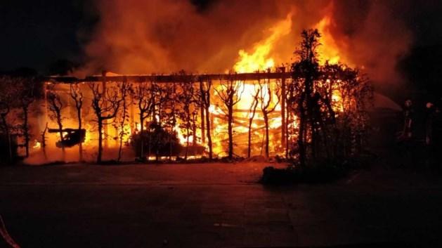 Jongerenkeet Maasbree brandt volledig af