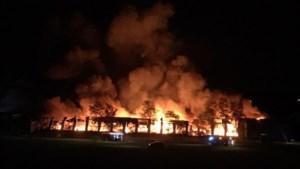 Opslag Winterland Hasselt volledig afgebrand