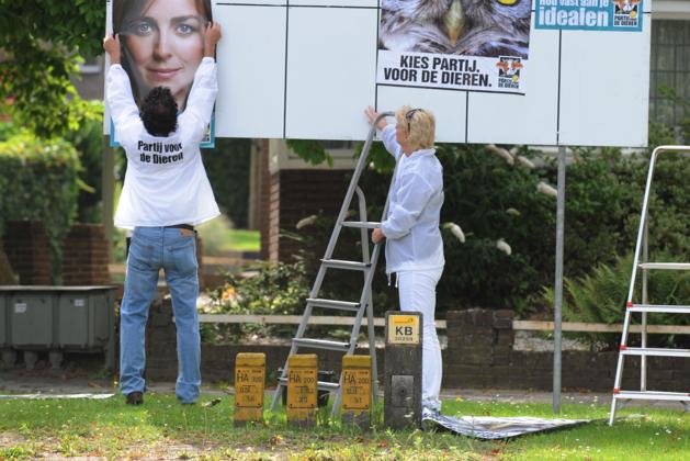 Partij voor de Dieren doet mee aan verkiezingen in Heerlen
