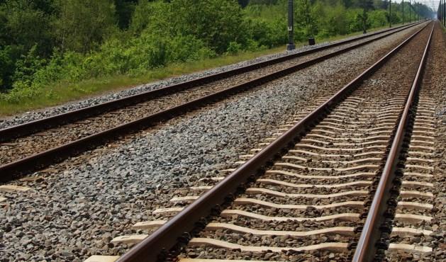 Boom op het spoor: geen treinverkeer mogelijk