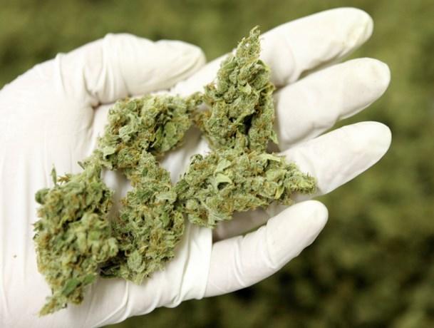 Arrestaties na vondst drugs in Elsloo