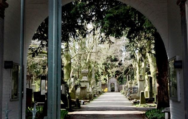 Maastricht krijgt groot herdenkingsbos met natuurbegraafplaats