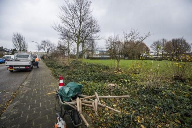 Politiek Venlo tegen sociale huur IJsvogelstraat