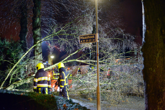 Tientallen meldingen van stormschade door heel Limburg