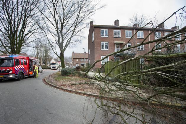 Bijna honderd meldingen van stormschade in Limburg