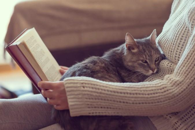 Ga de uitdaging aan met de boekenbingo