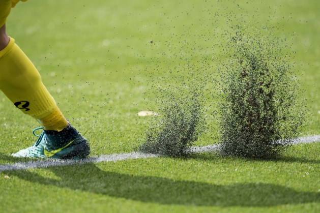 'Terug naar echt gras kost club 1,5 tot 2 miljoen euro'