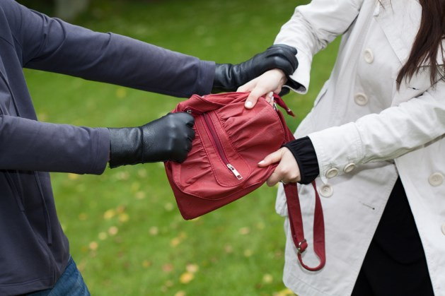 Vrouw jat tas uit seniorencomplex in Heerlen