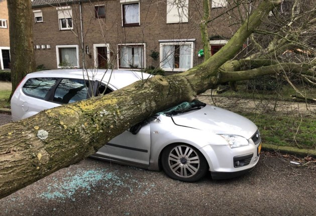 Storm levert record op in Limburg