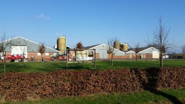 Drie man verdacht van stelen containers kippenmest