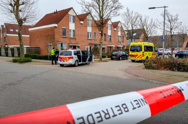 Limburger verdacht van geweldsincident in Arnhem