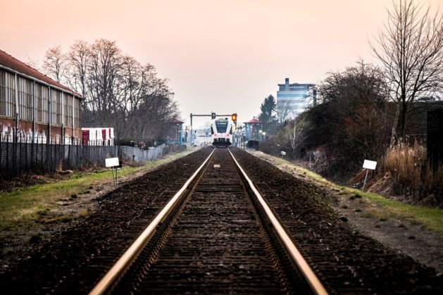 Dieseltrein nog lang niet weg van Maaslijn
