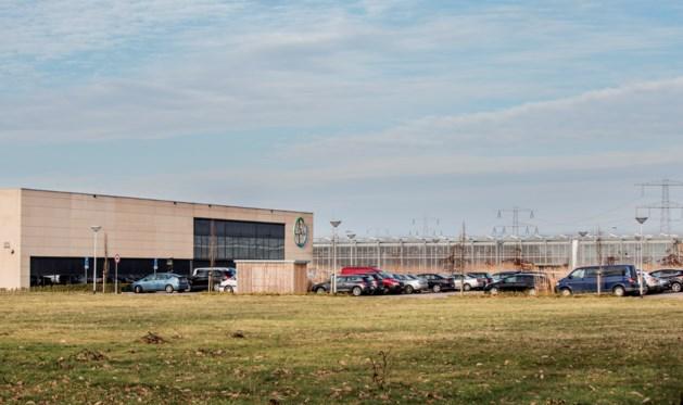 Bayer doet zadenbedrijf Nunhems van de hand