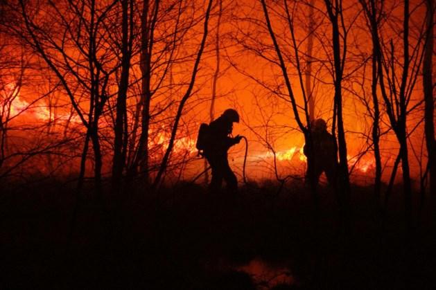 Groot gebied getroffen door brand Helenaveen