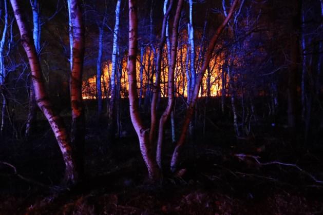 Meerdere branden tegelijk in natuurgebieden De Peel